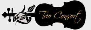 Trio-Consort a harmonia zenéje